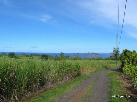 Hamakua Farm Land