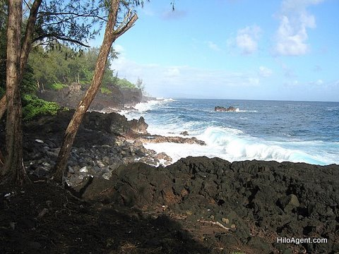 Puna Coast, Hawaii